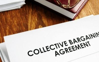 Holding Back Claims of Insufficient Reasonable Suspicion Under Collective Bargaining