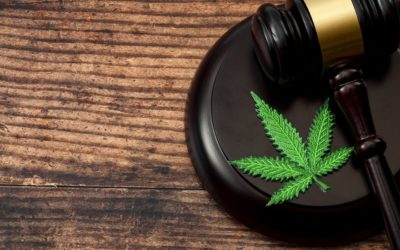 Good Faith Belief: What All Employers Should Know About Illinois Recreational Marijuana Laws