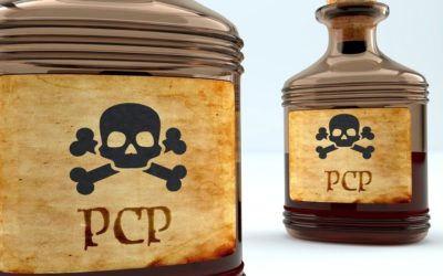 A Brief Overview of PCP and Its Analogs