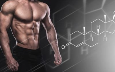 A Brief Overview of Anabolic Steroids