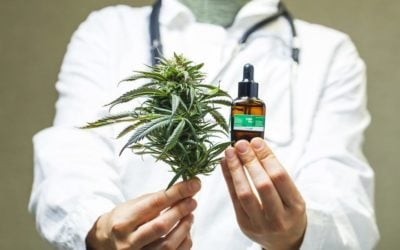 Will Medical Marijuana Discoveries Affect Safety in the Workplace?