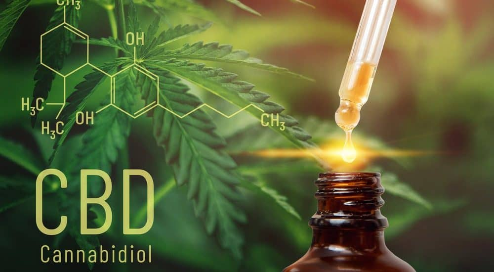 Can an Employee be Fired or Refused Employment for Using CBD in the United States?